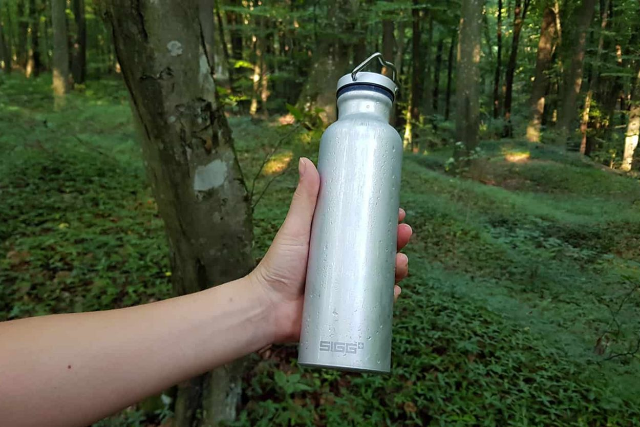 SIGG Original Alu Bottle - in woods