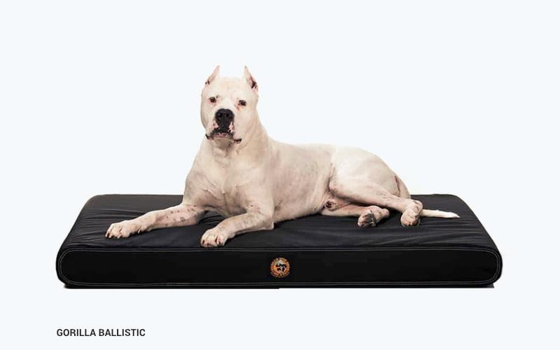Gorilla Ballistic Orthopedic Dog Bed - product image